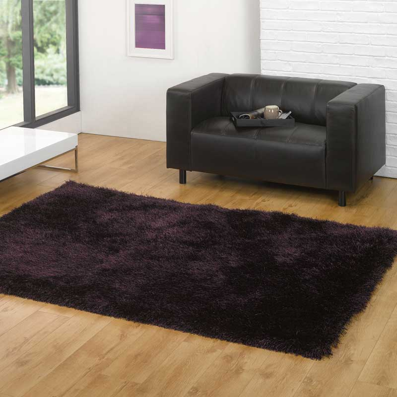 Santa Cruz Black/Purple Rug